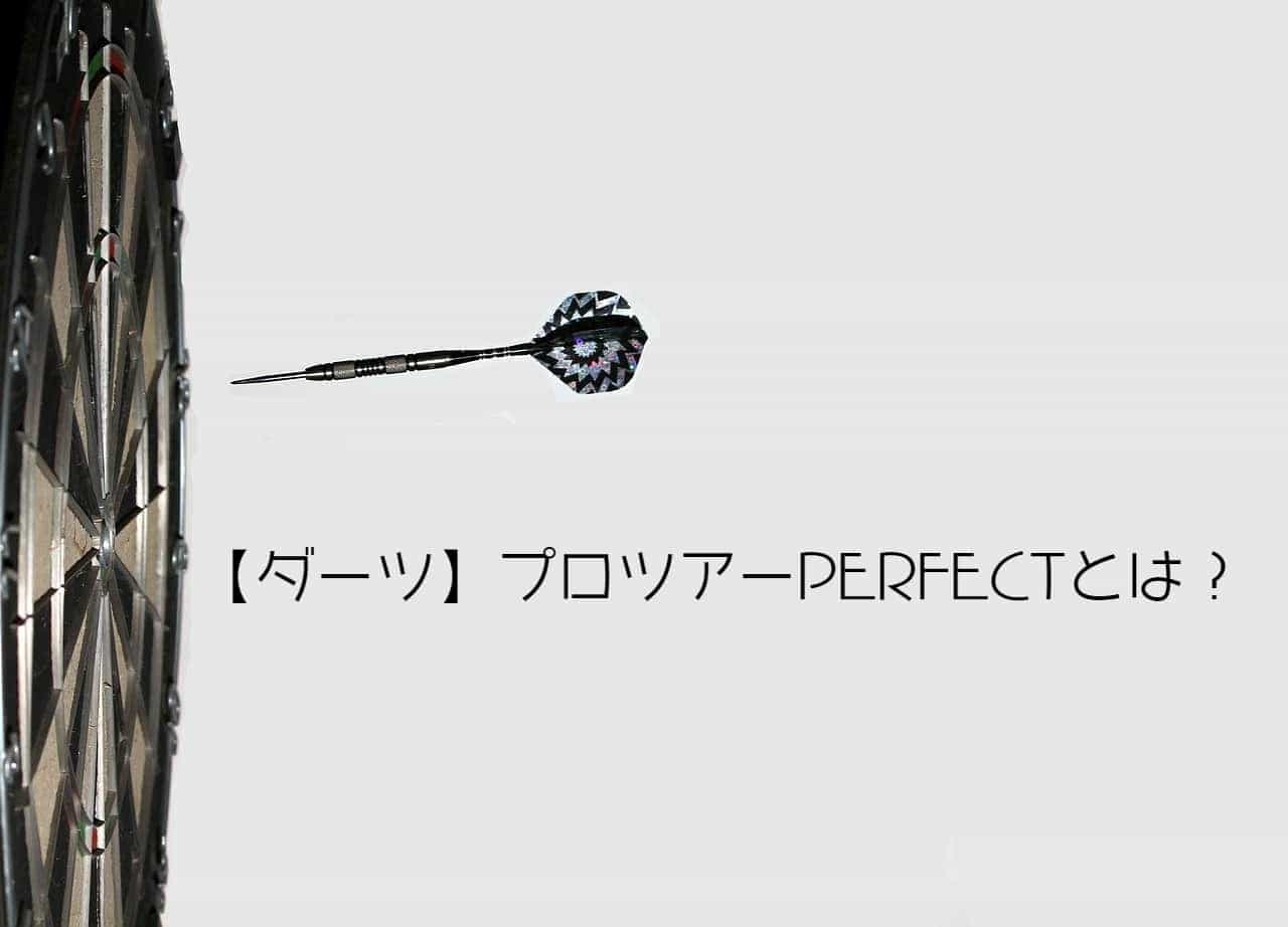 【ダーツ】プロツアーPERFECTとは?